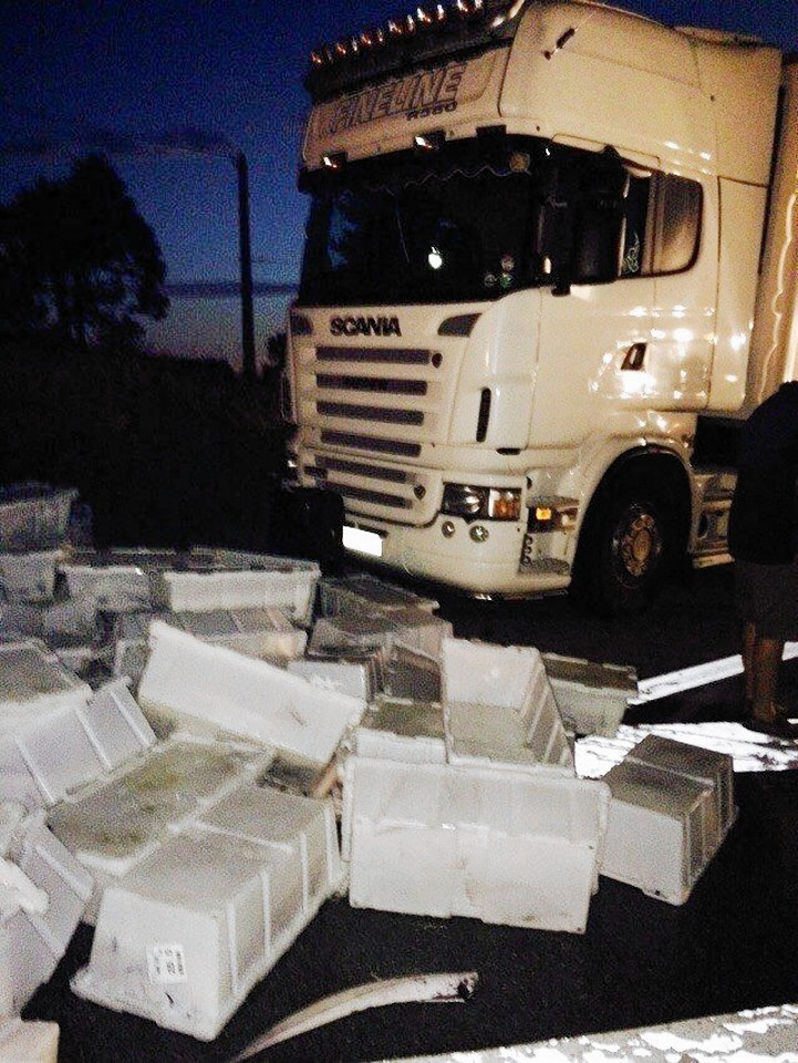Protesters have caused thousands of pounds of damage to lorries