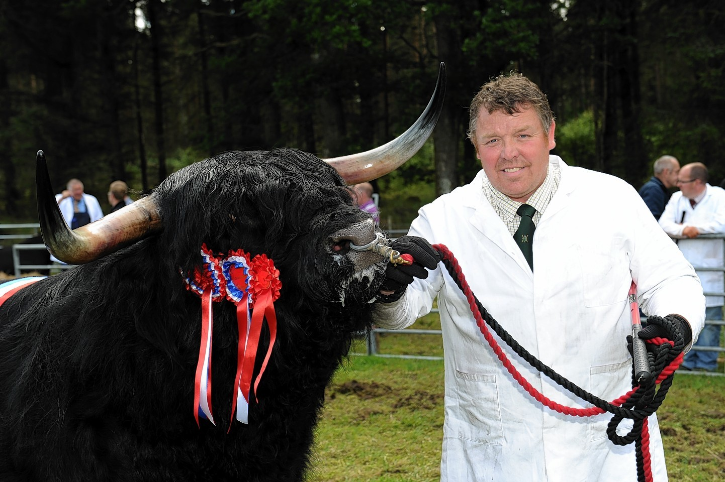 Fergie Ormiston is all smiles with the Queen's champion bull