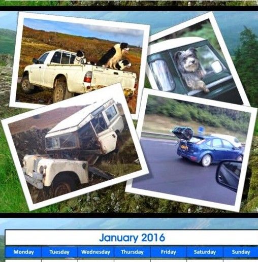 A year of terribly dangerous cars