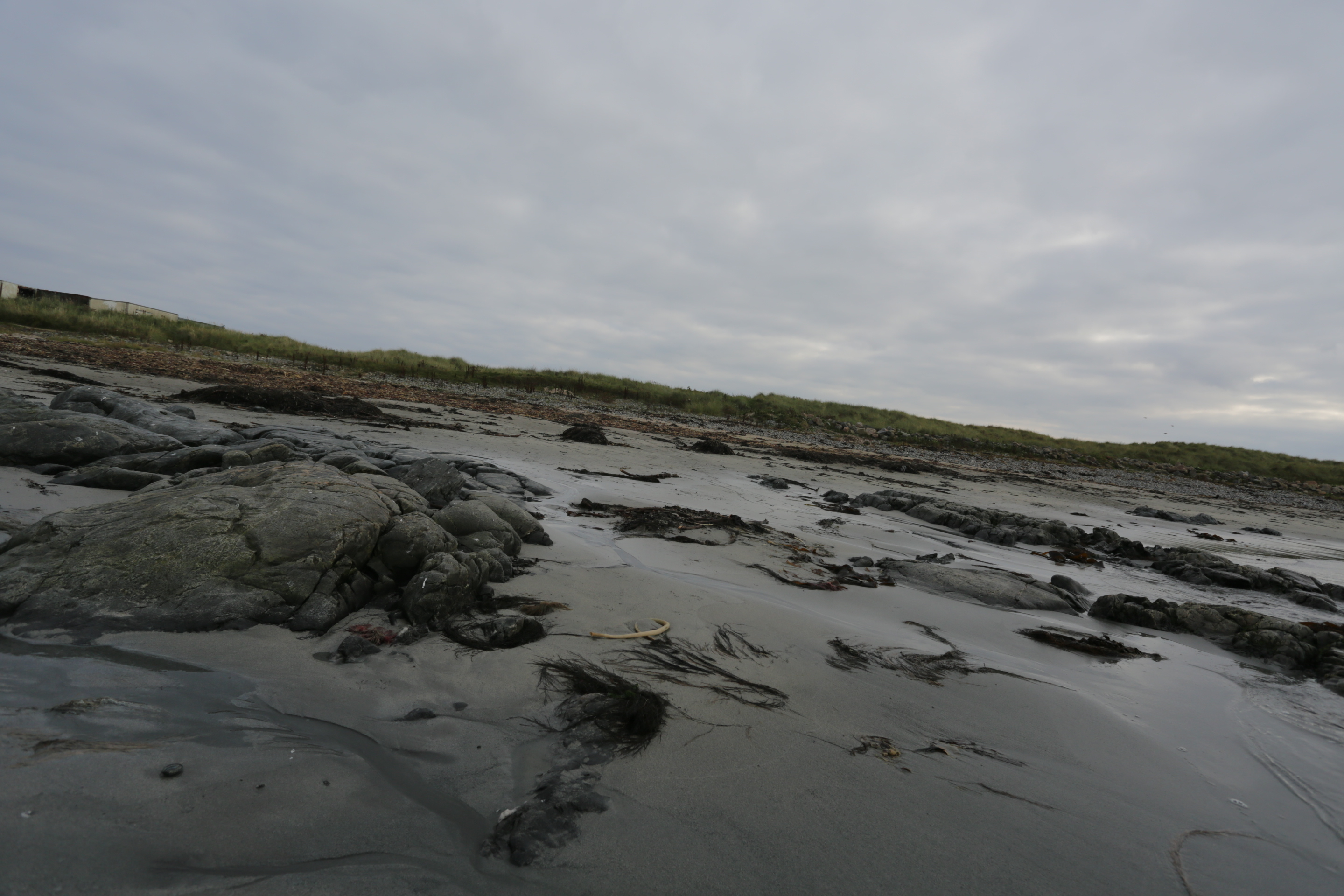 Cairnbulg beach after the clean