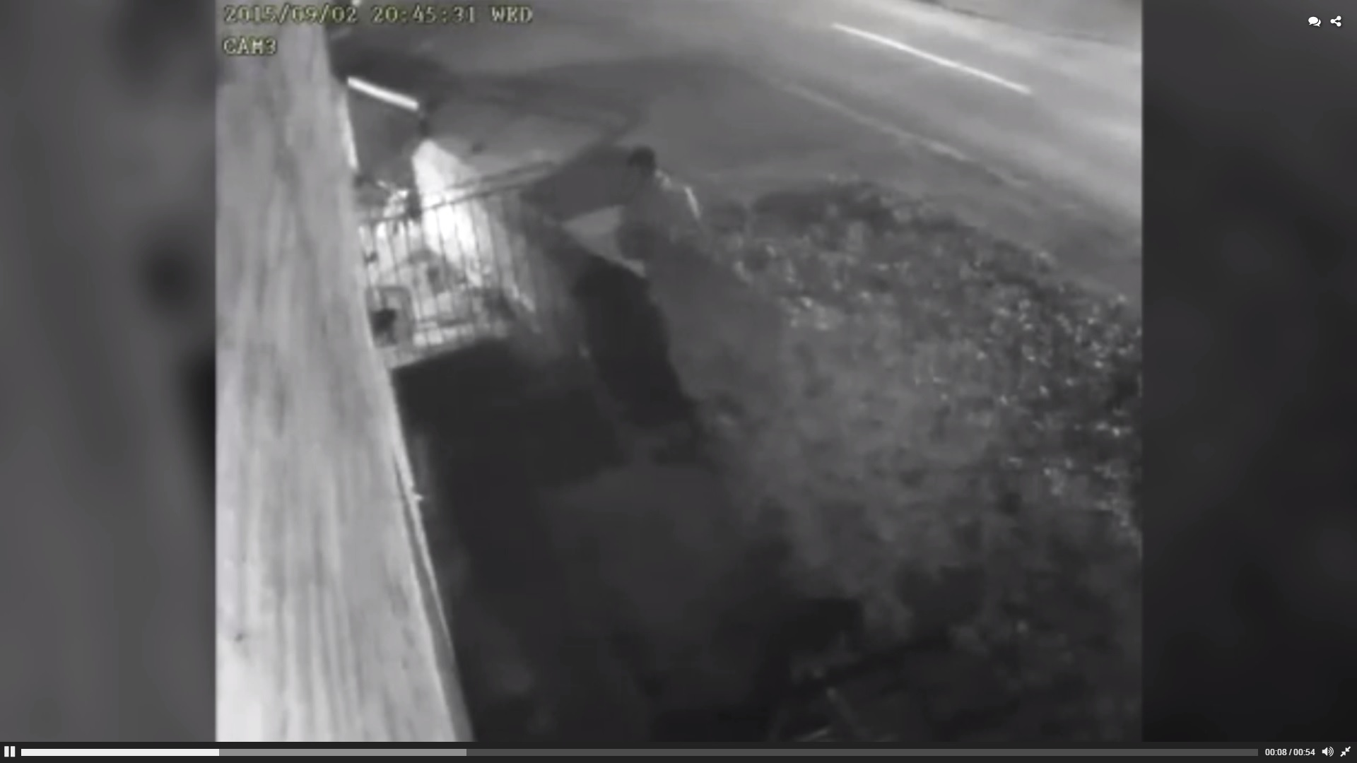 CCTV footage shows family pet dragged from it's home