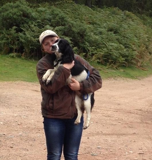 Lost dog back home safe and sound in Stonehaven