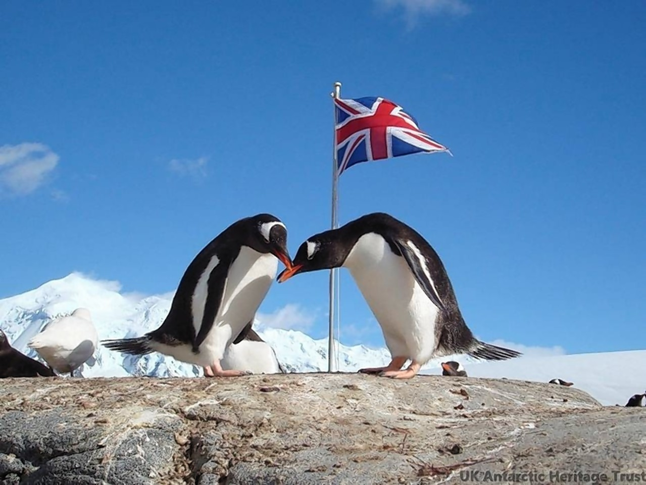 She will be responsible for the world's most southerly post office in Antarctica