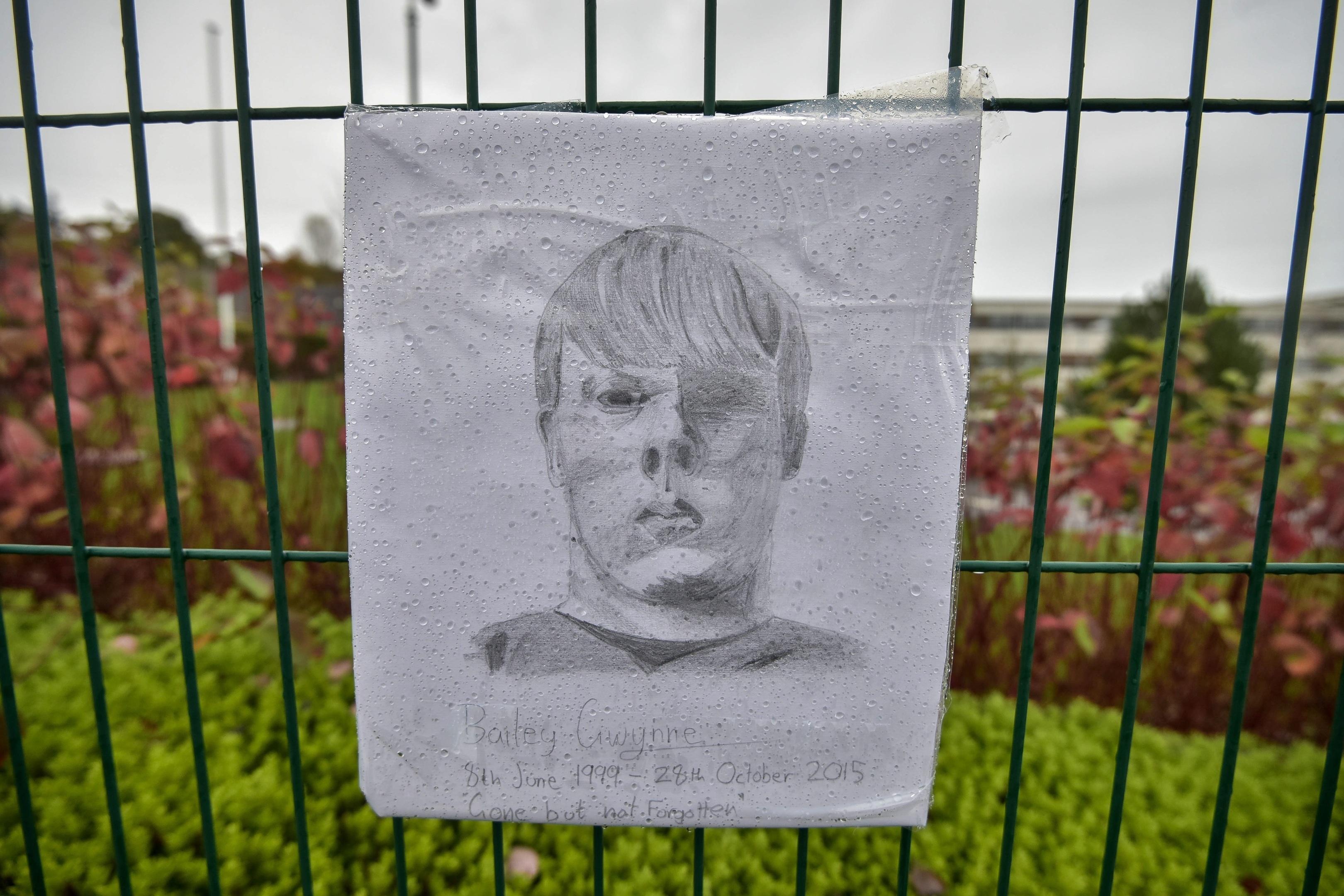 One pupil has sketched Bailey and added the picture to the tributes