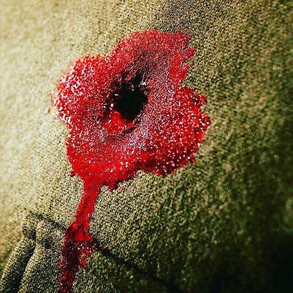 Armistice day, November 11