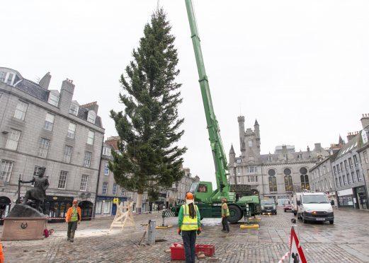 23/11/15 arrival castlegate christmas tree