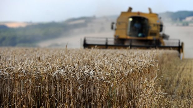 The MPs want farmers to be paid for delivering environmental and public goods