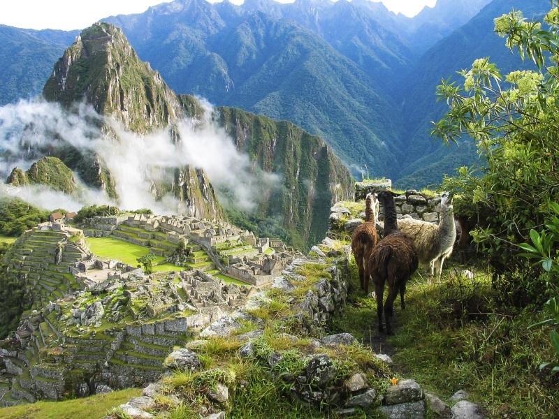RT Peru with Amazon River Cruise