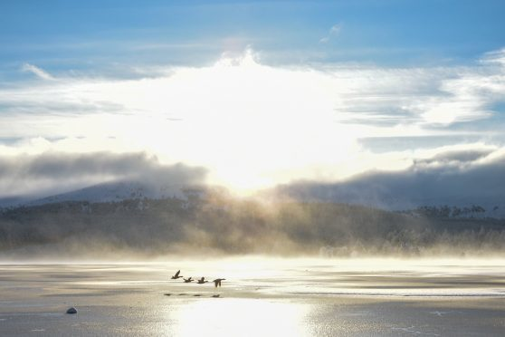 Scotland has endured two relatively mild winters in 2018-19 and 2019-20.