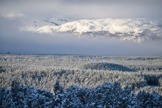 Snow covers trees and hills surrounding Aviemore