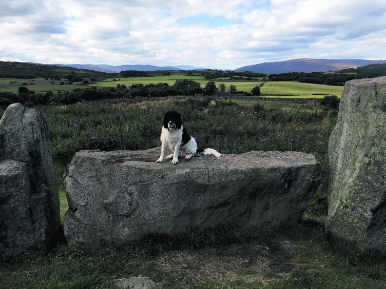 Abby from Drumoak at the standing stones outside Tarland with Lochnagar in the distance.