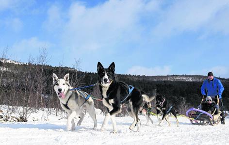XMAS Alta Norway 102588