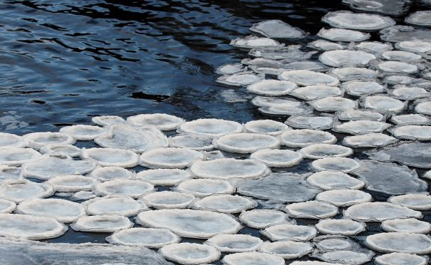 Ice pancakes on Ullapool River