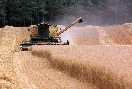 The report calls for better collaboration in the cereals supply chain