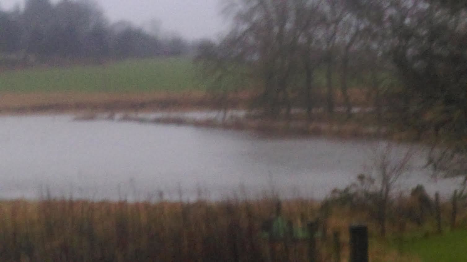 The River Ythan seen rising earlier today