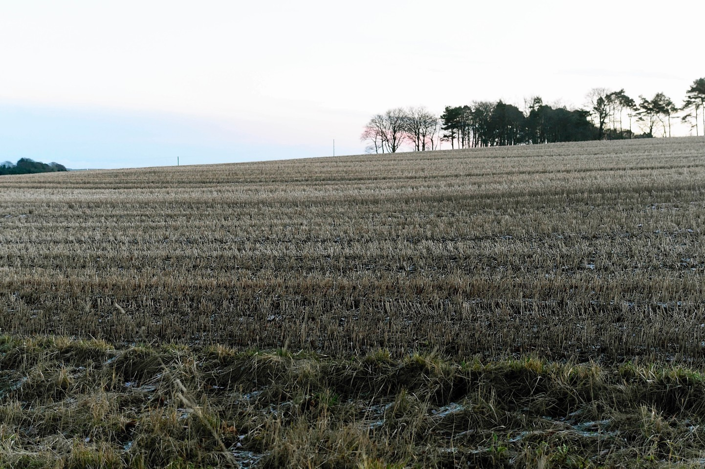 The land to the west of Waulkmill Farm, near Turriff.