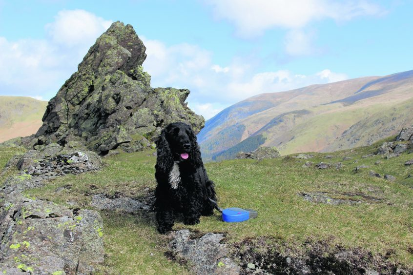 Noah taking a breather at the top of Helm Crag in Cumbria during his holiday in July. He lives with Bryan and Denise in Portlethen.