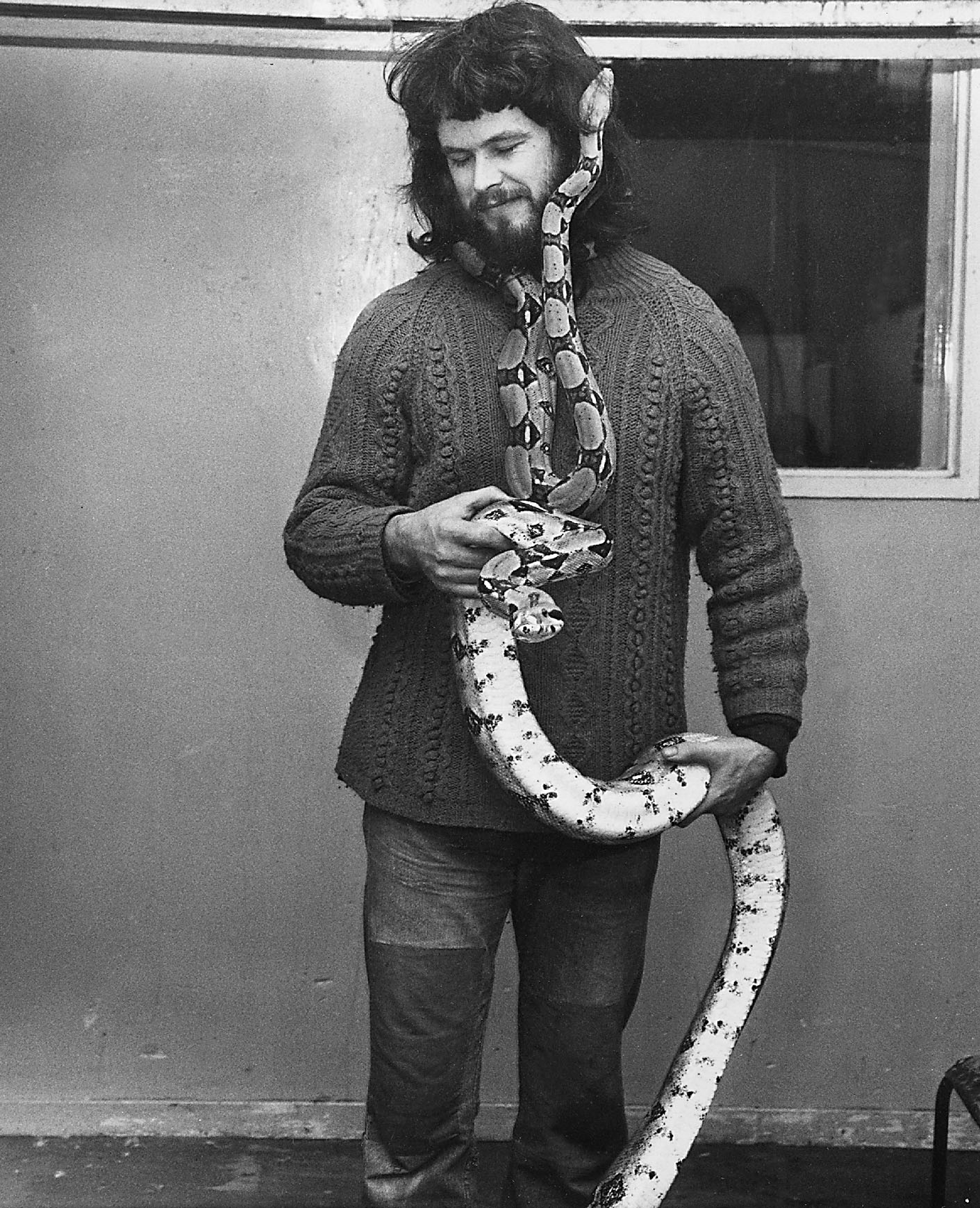 Keeper John Buchan with a couple of boa constrictors.