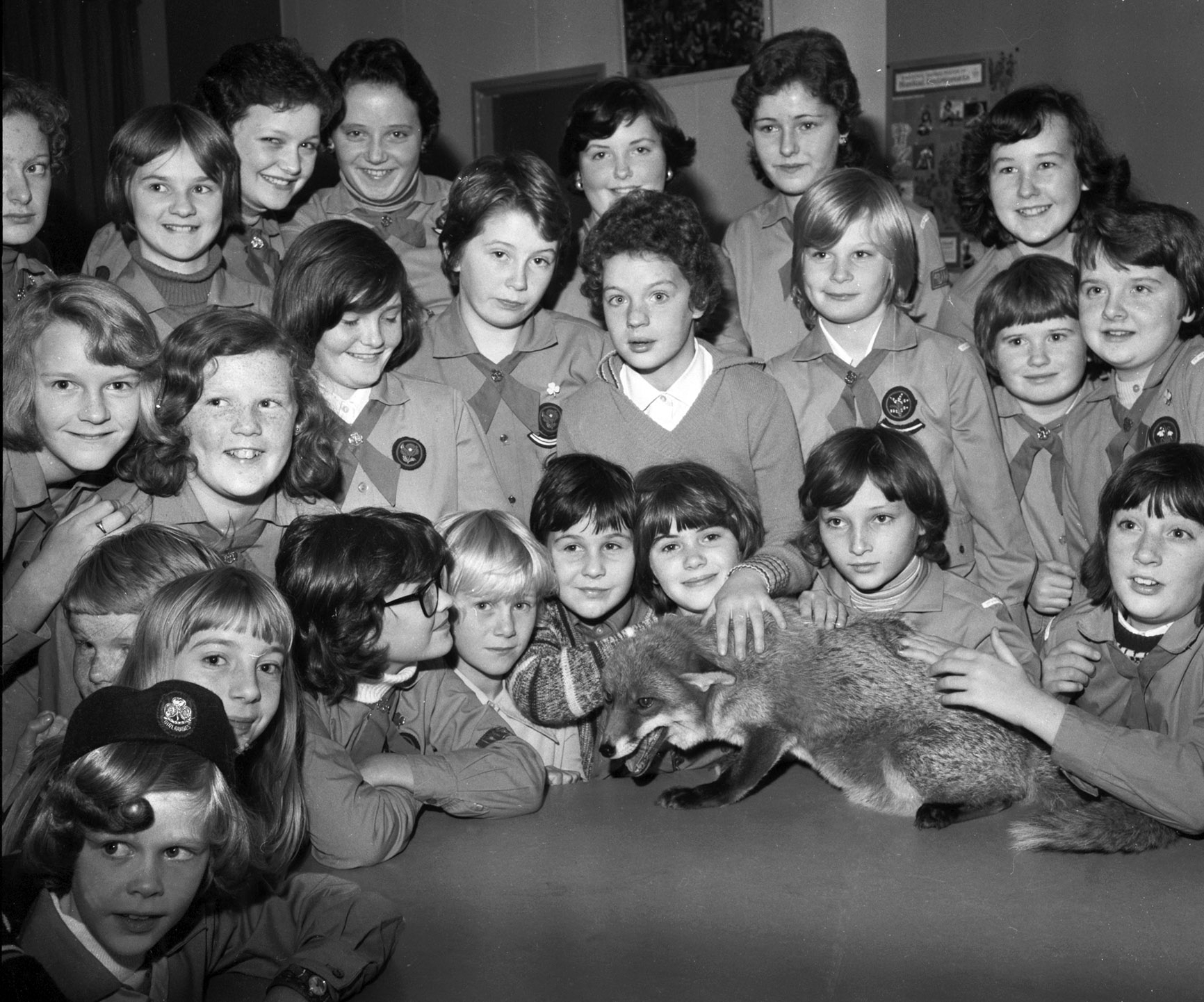 A happy moment for these members of the 2nd Newhills Guide Company at Hillocks School, Bucksburn, in October 1976, as they had a special visitor - Promise, the Aberdeen Zoo fox they had adopted two years previously.
