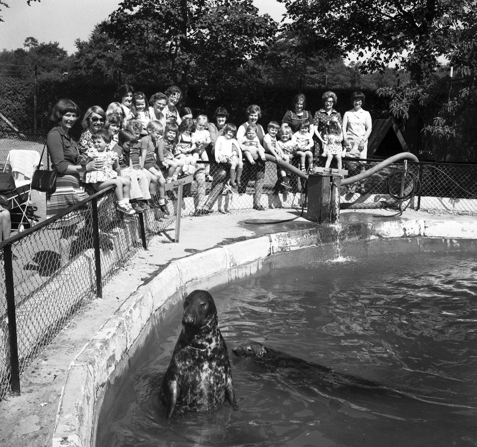 Old Rayne Playgroup posed for a picture round the seals' enclosure during a visit to Aberdeen Zoo at Hazlehead Park in July 1975.
