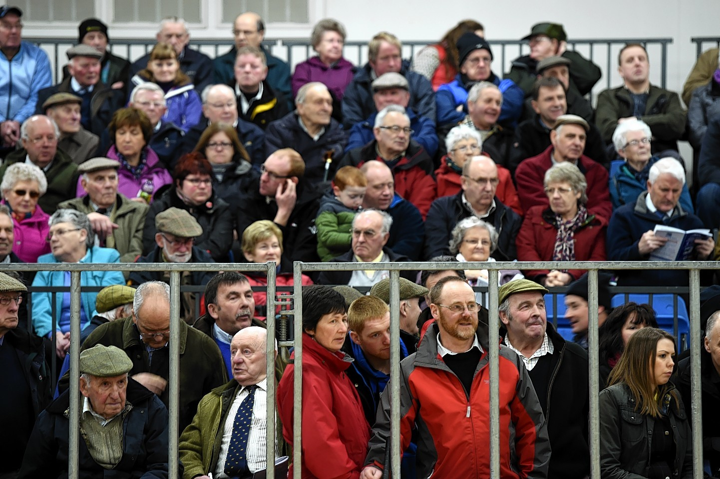 Hundreds of farmers gathered around the ring to watch the judging