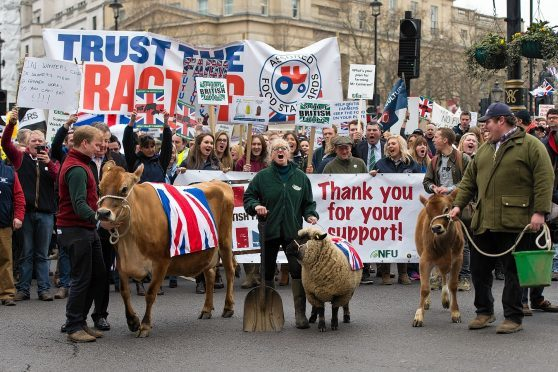 More than 1,000 farmers attended a march in London