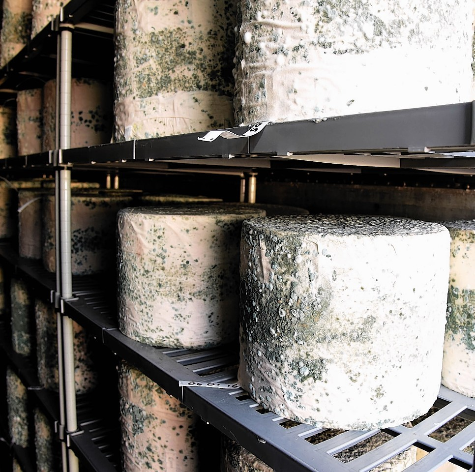 Cheese exports were up by nearly a third.