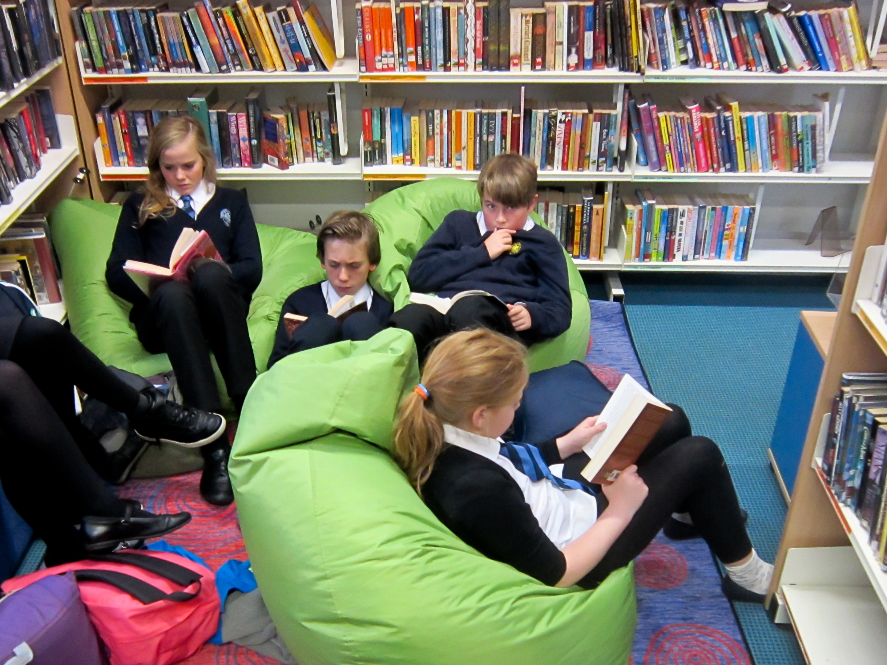 Argyll and Bute Council voted to scrap the mobile library service