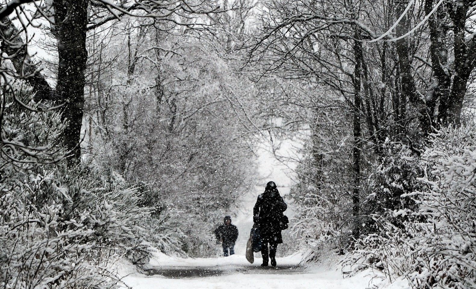 People walking down a farm road near Banchory during heavy snow in Aberdeenshire. Picture by Kenny Elrick.
