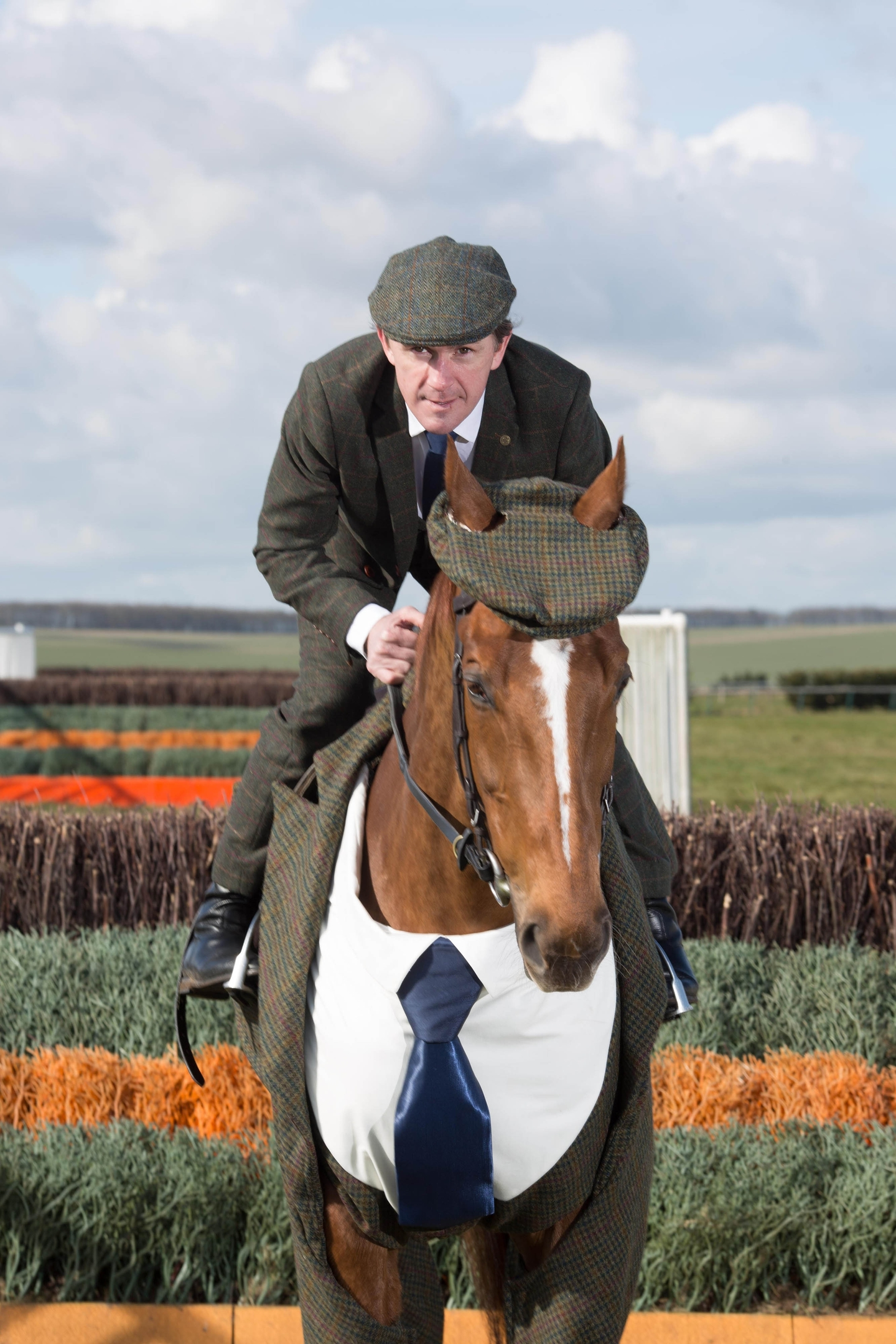 Tweeds for horses