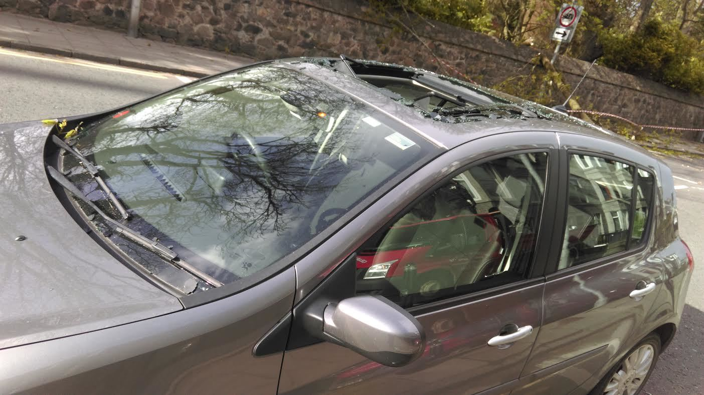 The sun roof of the car was hit by the falling branch