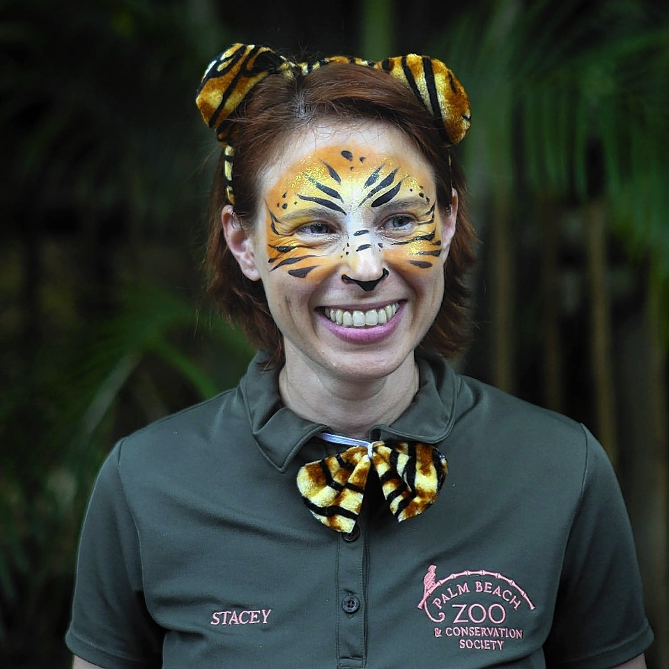 Stacey Konwiser was lead tiger keeper at the Palm Beach Zoo