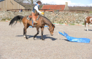 Jock Hutchinson at Horseback UK
