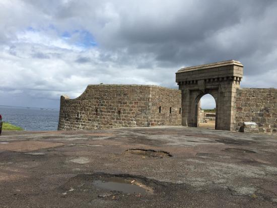 torry-battery