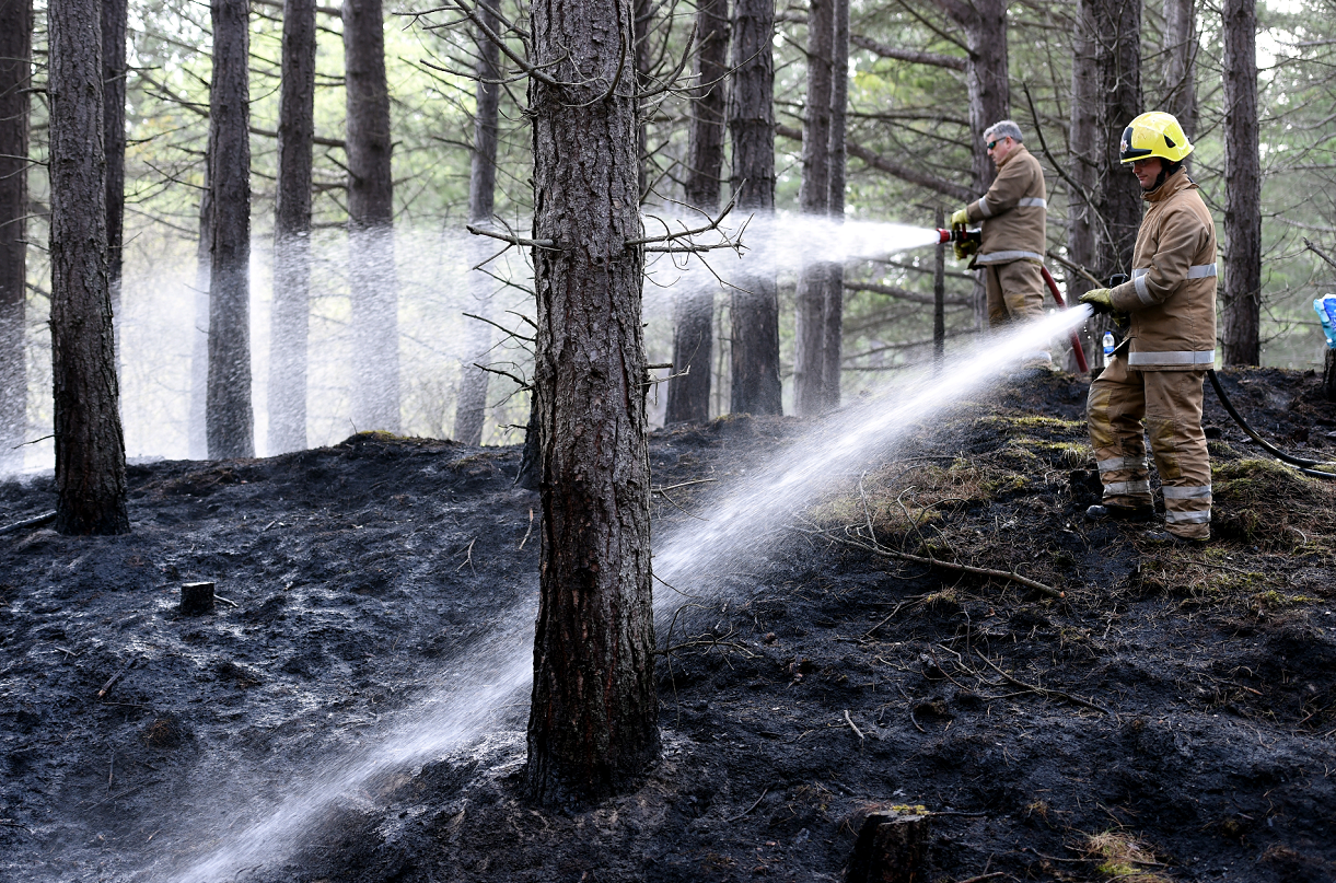 Fire crews from Elgin tackle the forest fire between Lossiemouth and Garmouth.