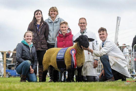 Sally Mair, Rebecca Rainnie, Lucy Mair, Archie Mair, Barclay Mair and Kenny Mair Jnr with the champion at last year's Royal Highland Show
