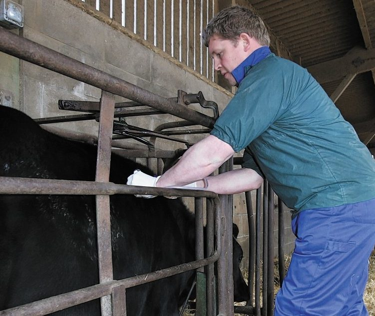 The Soil Association has called for more to be done to reduce the use of antibiotics on farms