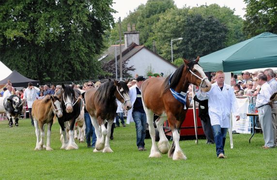 The majority of the horse classes at the Banchory Show will be judged at a new show field.