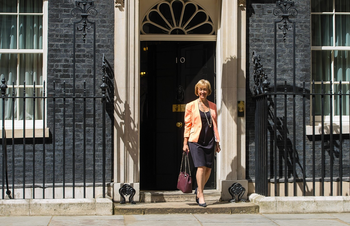 Andrea Leadsom leaves 10 Downing Street after receiving her promotion