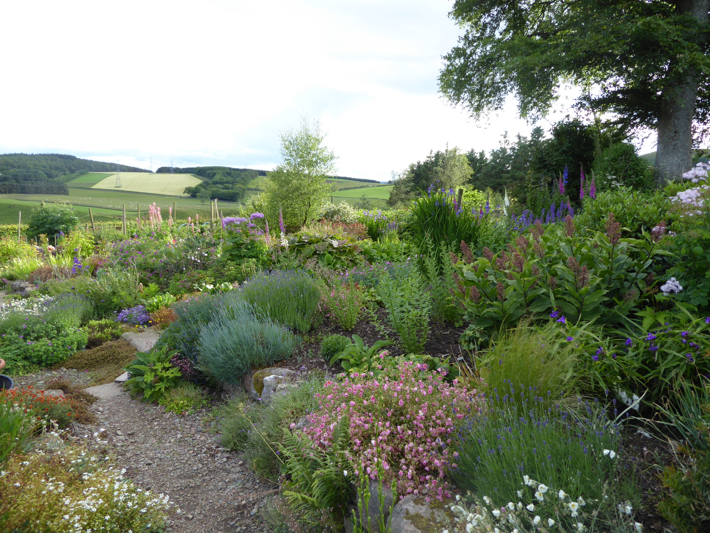 Auchenblae Open Gardens will be held next weekend