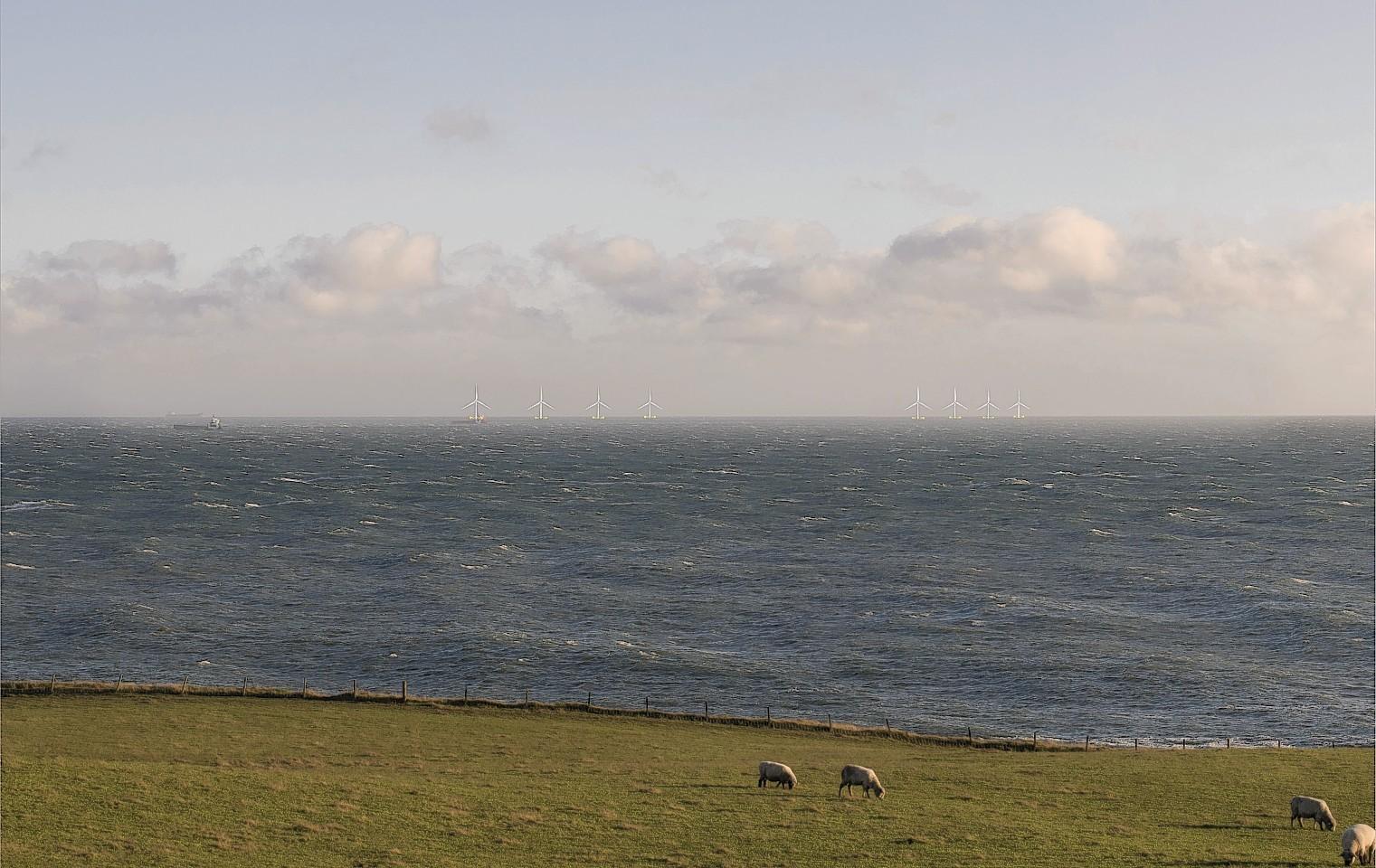 Wind-Farm1