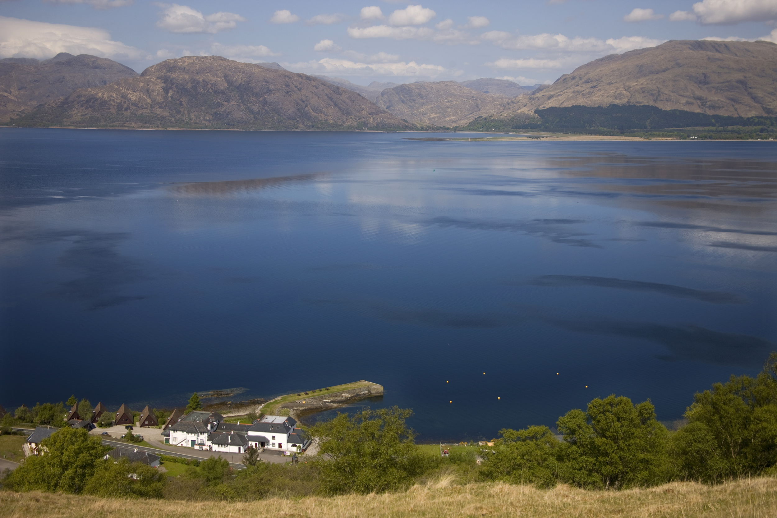 The local company, based at Garvan near Fort William, want to grow them at Loch Linnhe for a year then transfer them to their sites at Loch Eil