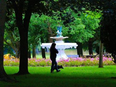 light-and-shade-the-ornamental-fountain-in-seaton-park-is-dramatically-framed-by-trees