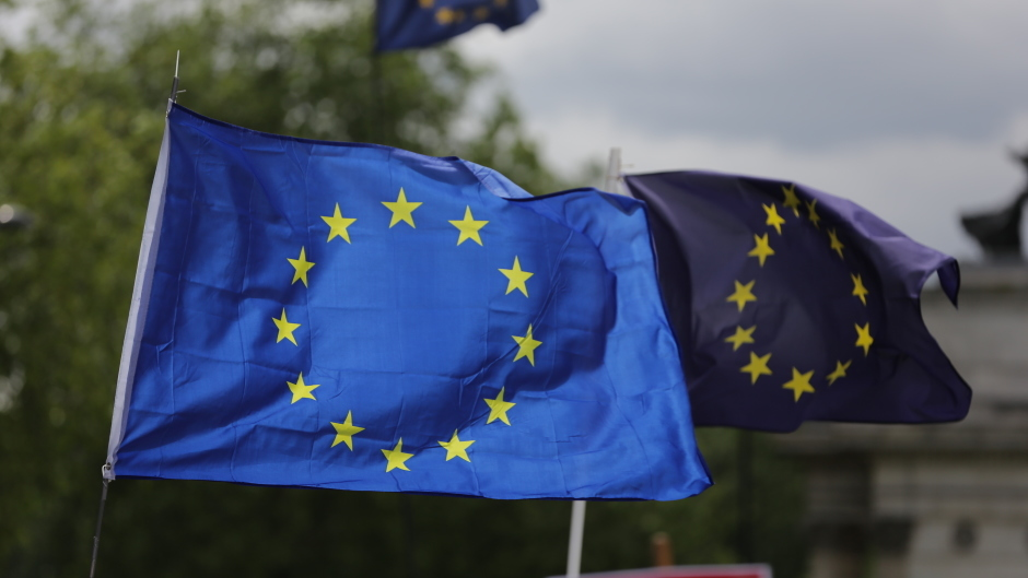 The ERS said 'glaring democratic deficiencies' in the European Union referendum campaign left voters feeling disengaged