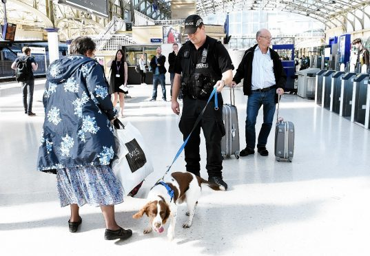 Liam Kerr MSP wants increased legal protection for police dogs and other service animals