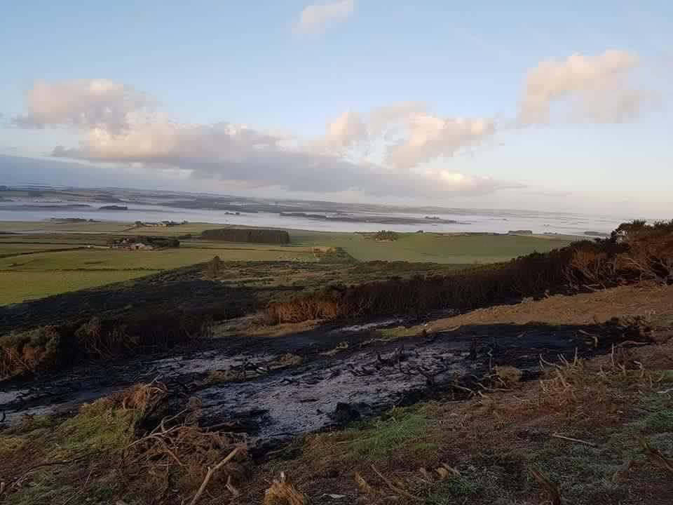 Fire damage on Mormond Hill near Strichen.