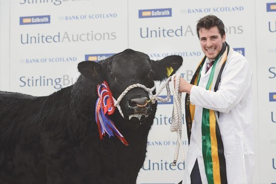 Noel Hook shows the Aberdeen-Angus champion