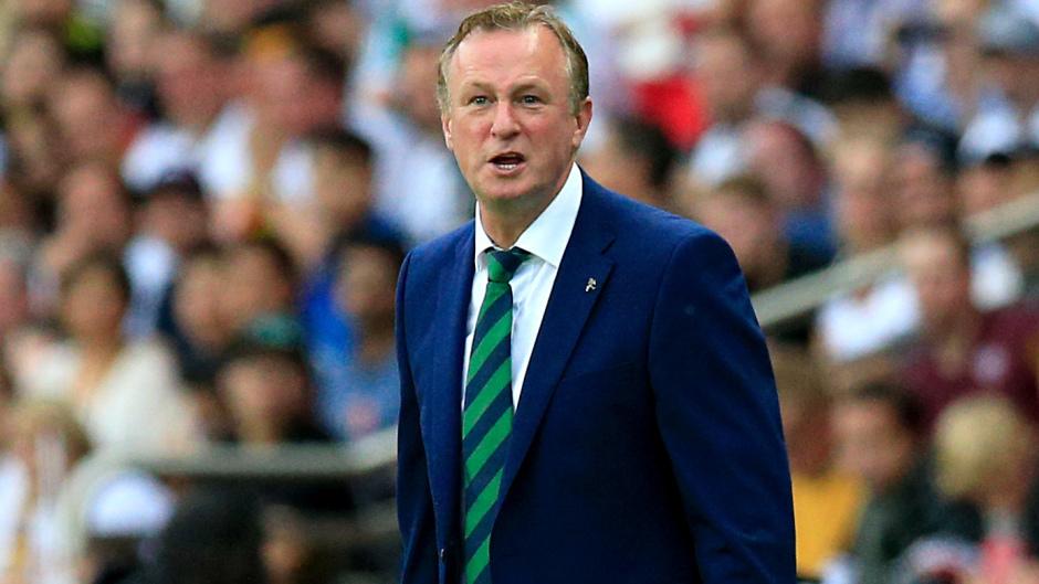 Michael O'Neill turns down Scotland job