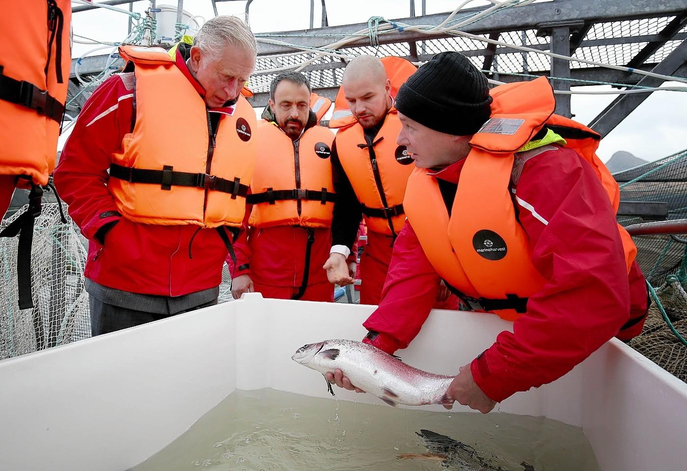 Prince Charles at the fish farm