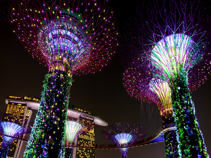 gardens-by-the-bay-singapore-night2
